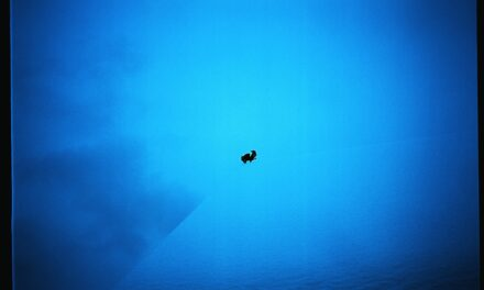 """Neon Cola. Fotograful colorist în """"perioada albastră"""""""