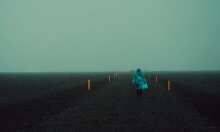 Lăcră Grozăvescu / Untitled